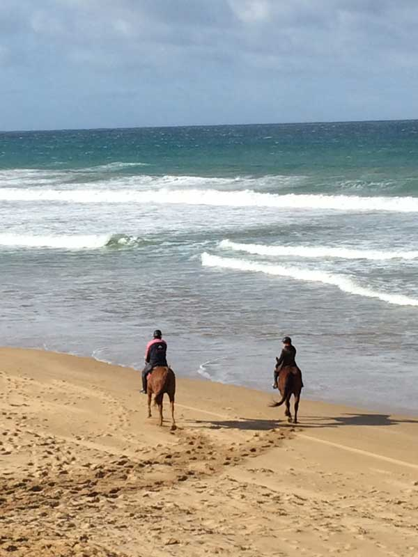 horse-back-riding-on-the-beach